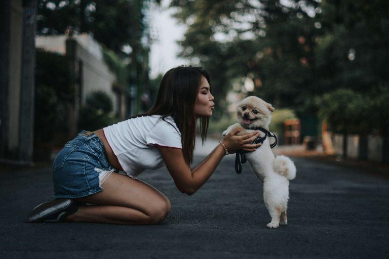 Hondennamen teef