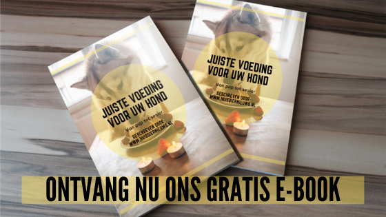 Ontvang nu ons gratis e-book