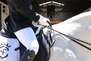 is paardrijden een sport 2021