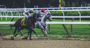 is paardrijden een sport