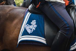 paardrijden is geen sport
